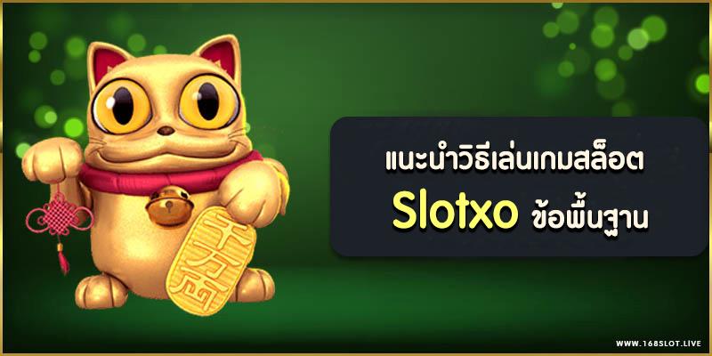 แนะนำวิธีเล่นเกมสล็อต Slotxo ข้อพื้นฐาน และข้อควรรู้ก่อนเล่น